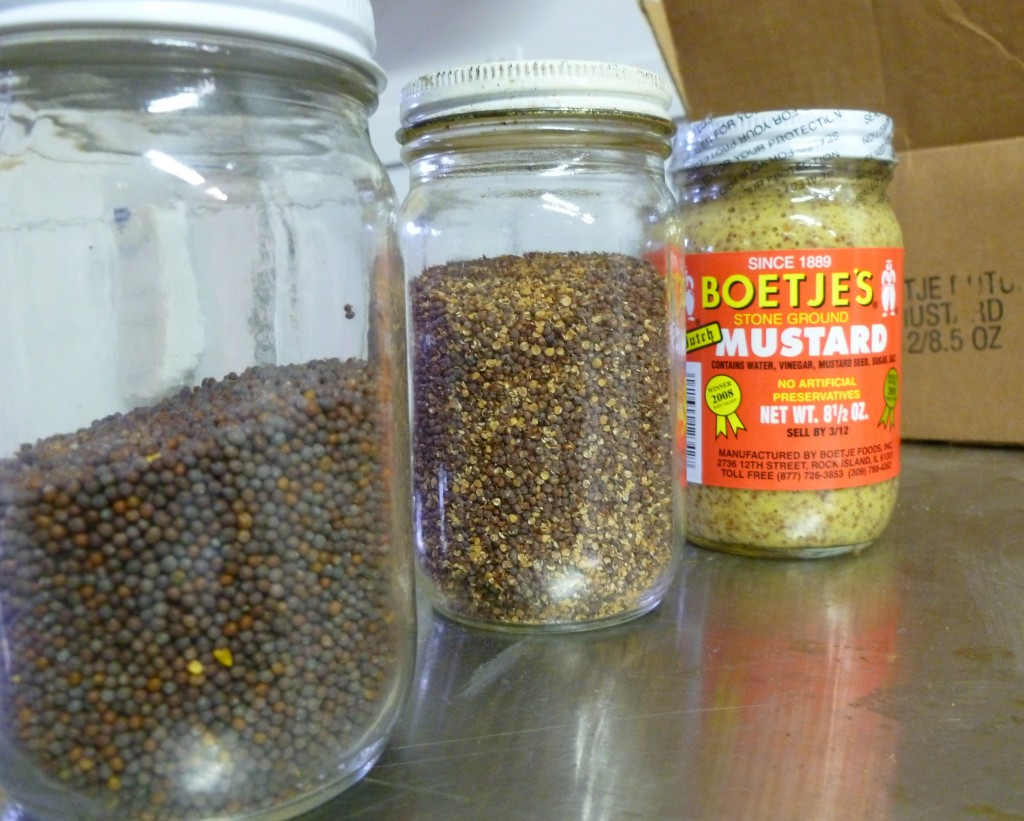 Three of the stages of Boetjes gourmet mustard.